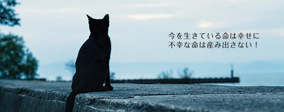 動物の愛護及び管理に関する法律第27条 -(1)愛護動 …
